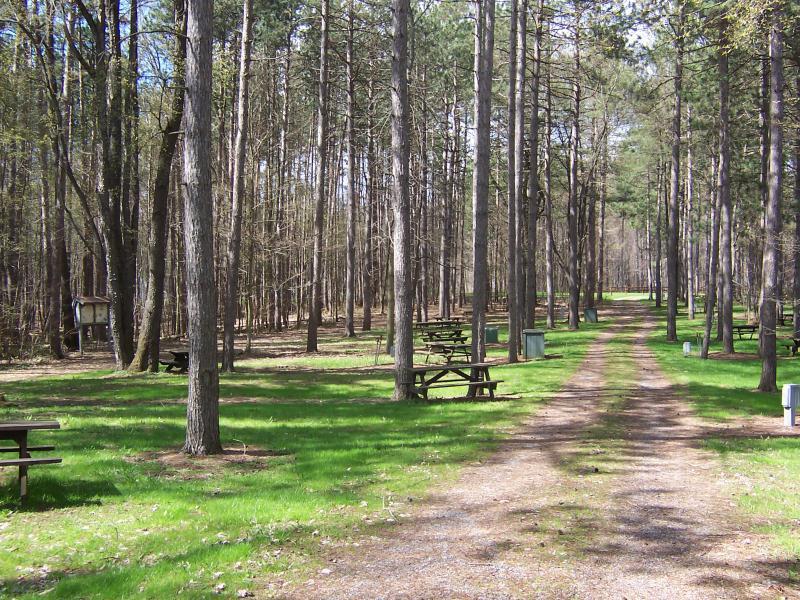 faun lake camp sites