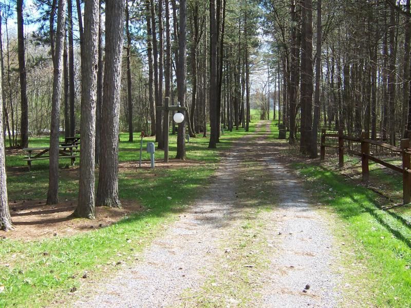 From Faun Lake Main Lane To Sites